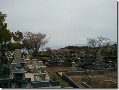 墓参り23 4月